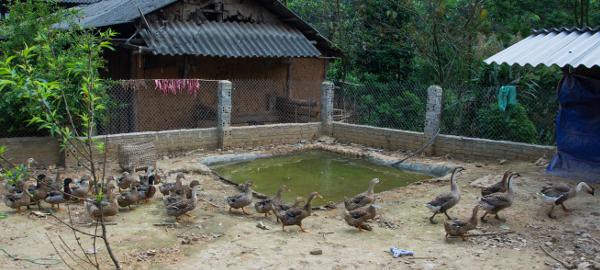 Rencontres du vietnam december 2016