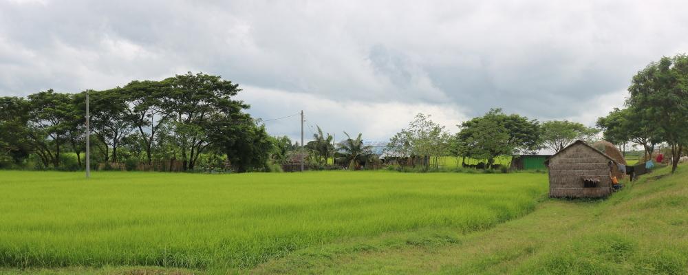 Zone rurale