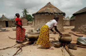 Problématique karité au Burkina-Faso