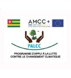 UE- AMCC- PALCC